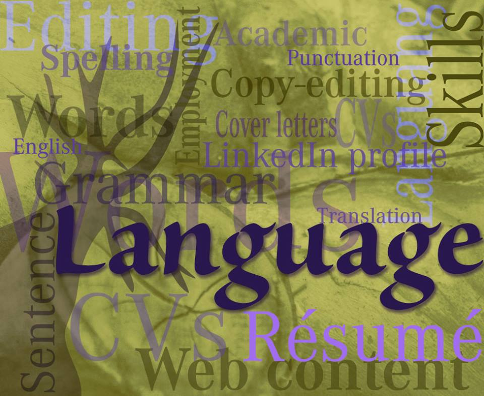 Professional CV Writers Pretoria, Language expert,